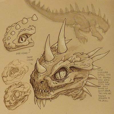 Lizard Anatomy: Head